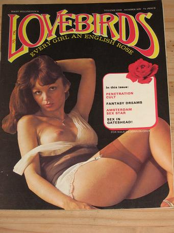 Amusing idea Vintage adult magazines consider