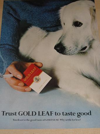 cheapest Bond cigarette cartons