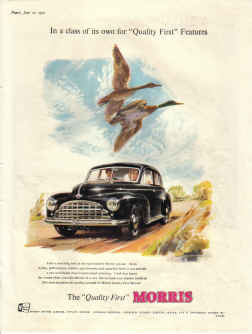 ORIG 1951 MORRIS CAR AD GEESE IN A CLASS OF ITS OWN